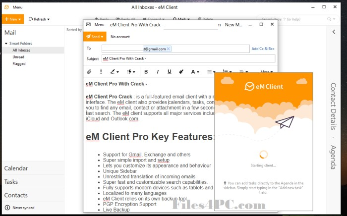 eM Client Pro Full Version Interface
