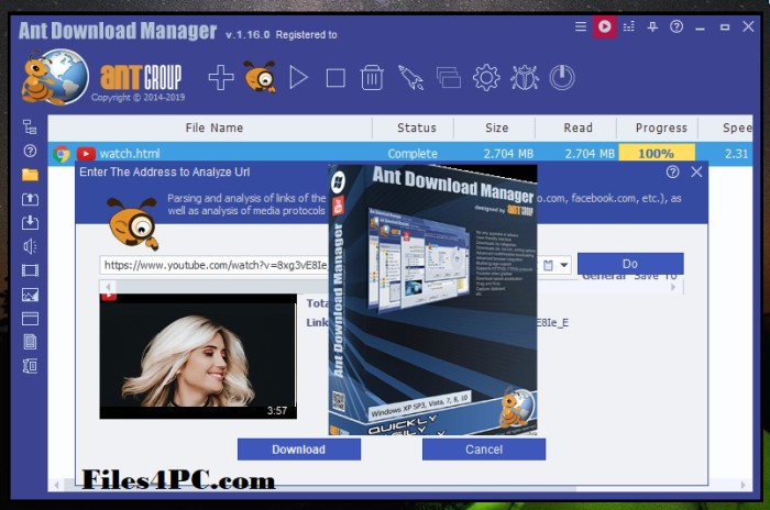 Ant Download Manager Pro Full Version Interface